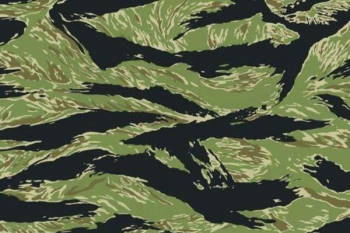 Airsoft Domain: Tiger Stripe Camouflage
